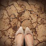 地球温暖化っていろいろな方面に影響