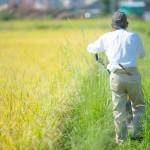 日本の農業。農協からの決別