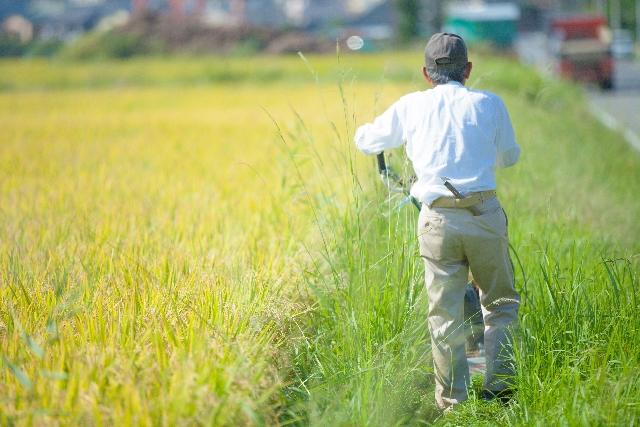 農協改革の本音