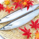 漁業も農業なみに衰退の一途
